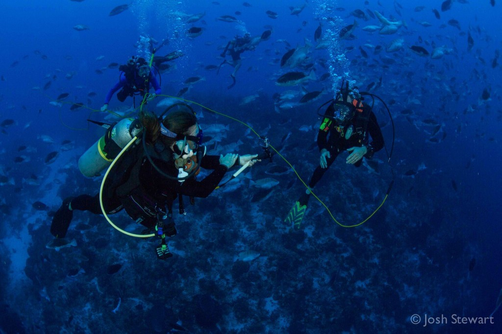 Here are Christy and Brice Semmens talking to a classroom from Nassau Grouper's spawning site on Little Cayman.